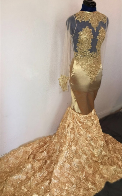 Amazing Mermaid Sleeved Prom Dress Flower Applique Champagne Evening Gowns