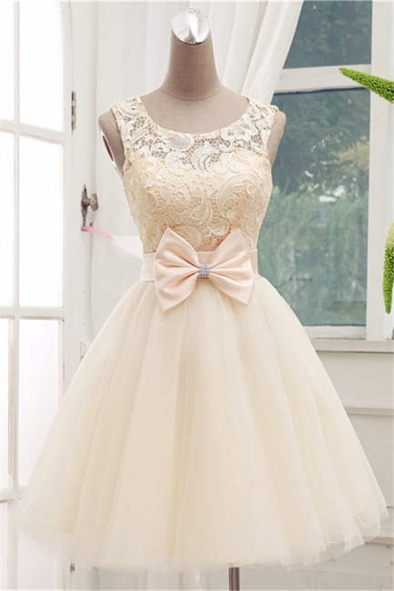 Cute Lace Tulle Bridesmaid Dresses With Bowknot Sash  Homecoming Dresses