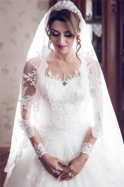Long Sleeve Lace Wedding Dresses  | Ball Gown Long Train See Through Back Bride Dress