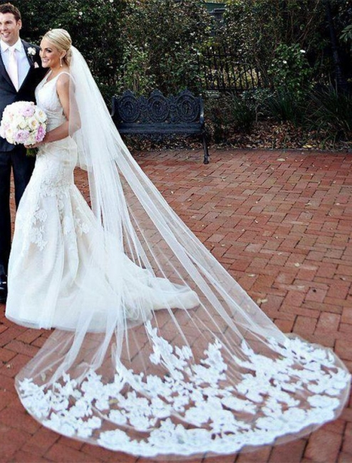 Mermaid Wedding Gowns Online V-neck Lace Bride Dresses with Wedding Veil
