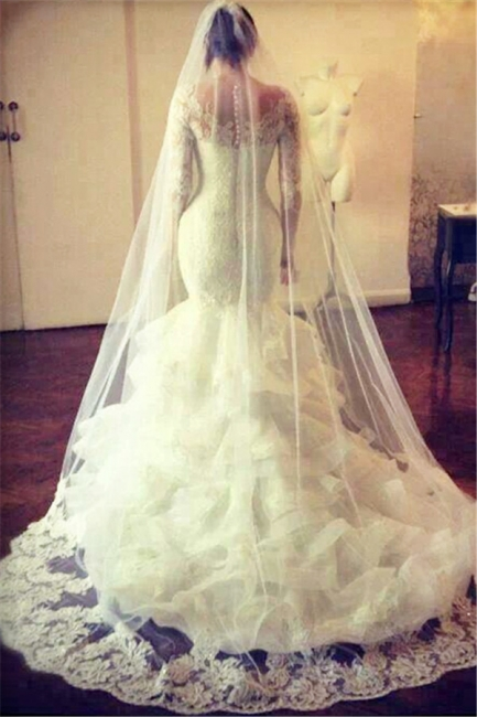 Gorgeous Wedding Dresses  Lace Mermaid Long Sleeve Bridal Gowns with Wedding Veil