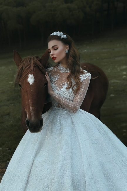 Attractive Roayl Long Sleeves Wedding Dresses High Neck Sequins Vintage Bridal Gowns Online