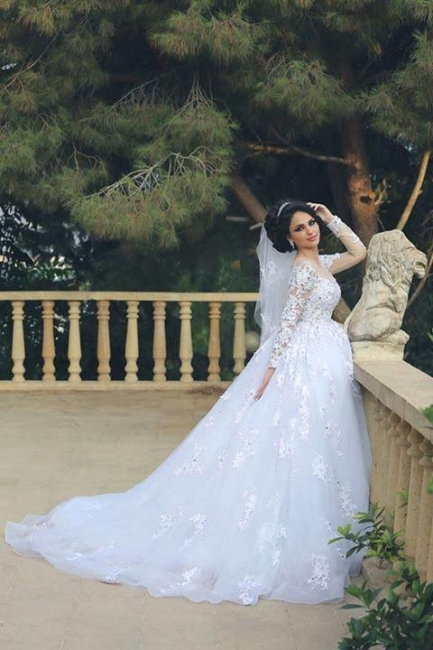 Gorgeous Long Sleeve Lace Princess Dress A-Line Tulle  Wedding Dress WE0011