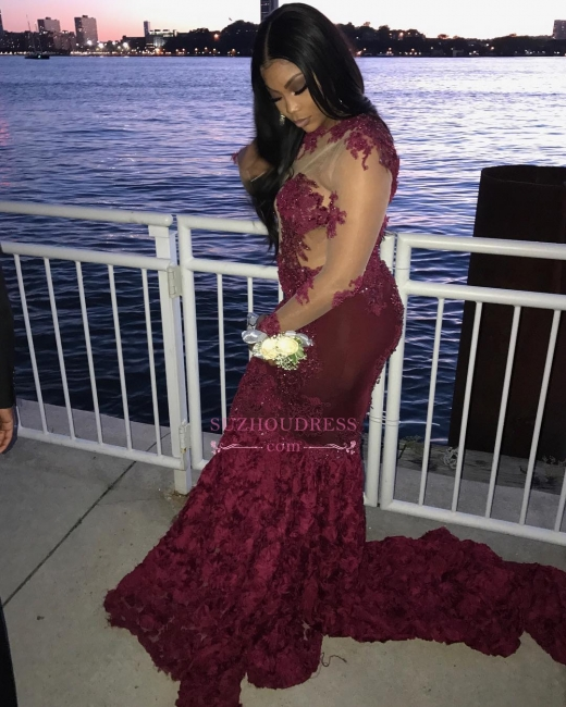 Long Sleeve Lace Appliques Sexy Prom Dresses | See Through Tulle Open Back Evening Gown with Roses