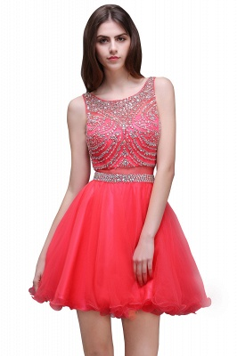 Sleeveless Cute Crystal Beads A-Line Applique Rose Short Evening Dresses_1