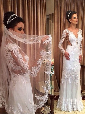Unique Column V-neck Tulle Romantic Wedding Dresses Long Sleeves Sweep Train | Bridal Gowns On Sale_1