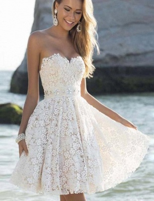 Fashion Different Sweetheart Flattering A-line Elegant Lace Flower Short Prom Homecoming Dress_1