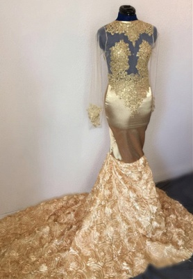Amazing Mermaid Sleeved Prom Dress Flower Applique Champagne Evening Gowns_2