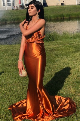 Stunning Sleeveless V-neck Mermaid Prom Dresses Spaghetti Straps Long Evening Gowns_2