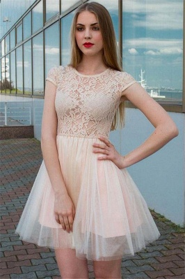 Illusion Lace Tulle Jewel Sleeveless Homecoming Dress_1