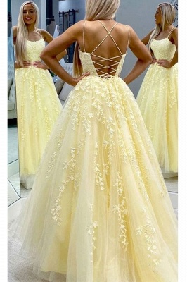 Spaghetti Strap Backless Appliques Prom Dresses A-Line Lace Sleeveless Evening Dresses_3