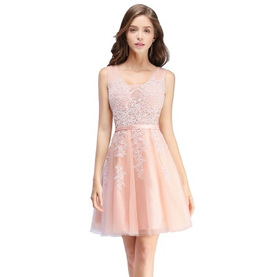 Sliver Grey  V-neck Mini Homecoming Dresses  Lace Appliques Tulle Party Dress_1