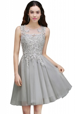 Appliques Tulle Sleeveless A-Line Silver Short Homecoming Dress_2