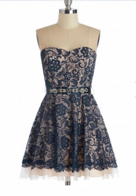 Cute Sweetheart  Lace Homecoming Dress Latest Custom Made Plus Size Party Gowns_1