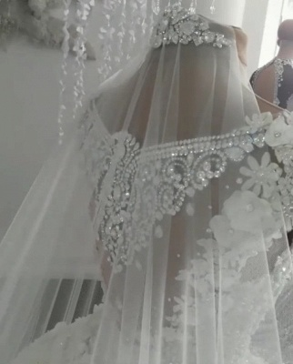 Sheer Tulle Flowers Wedding Dresses with Beading 2019 Sleeveless Crystal Bridal Gowns Online_5