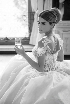 Elegant Lace Princess Ball Gown Wedding Dresses Sheer Mesh Neck Buttons Popular Bridal Dresses_1