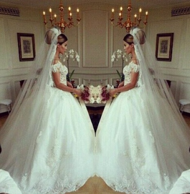 Elegant Lace Princess Ball Gown Wedding Dresses Sheer Mesh Neck Buttons Popular Bridal Dresses_3