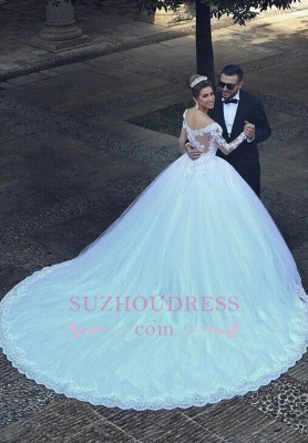 Puffy Tulle Ball Gown Bride Dress Appliques Long Sleeves Lace Elegant Long Train Wedding Dresses_1
