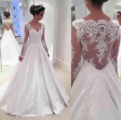 Long Sleeve V-neck  Wedding Dresses Online Sheer Lace Back Bridal Dresses_1