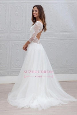 Simple V-neck Bride Dress Lace Tulle A-line Backless  Wedding Dress_1