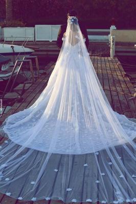 Alluring Open Back Appliques Wedding Dresses Off-the-Shoulder Lace Bridal Gowns Online_3