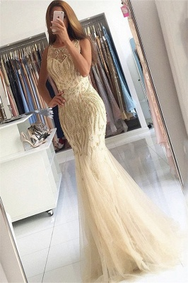 Beaded Crystals Mermaid Tulle Evening Dress Champagne  Gorgeous Prom Dress BA6133_3