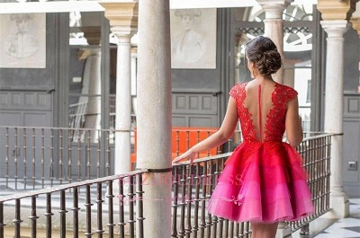 Colorful Tulle Red Lace Homecoming Dresses  A-line Mini Cap-Sleeve Newest Homecoming Dress_1