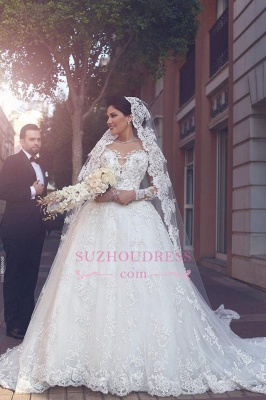 Elegant Appliques Tulle Ball Gown Bride Dress  Long Sleeves  Princess Wedding Dress_3