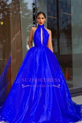 Royal Blue High Neck Prom Dresses  | Open Back A-line Evening Dress with Keyhole_4
