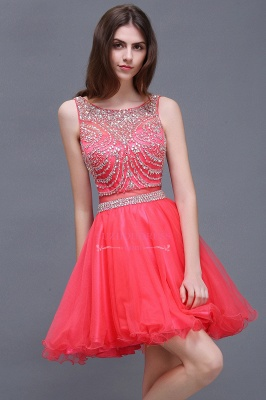 Sleeveless Cute Crystal Beads A-Line Applique Rose Short Evening Dresses_2