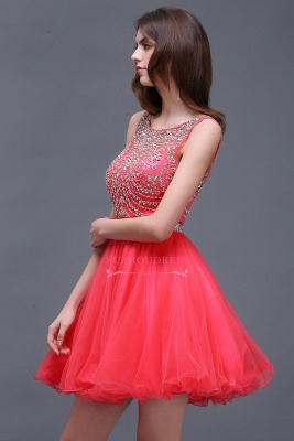 Sleeveless Cute Crystal Beads A-Line Applique Rose Short Evening Dresses_3