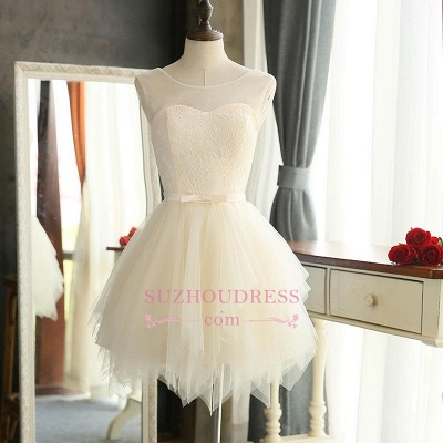 Mini Tulle Elegant Sleeveless A-Line Homecoming Dresses_1