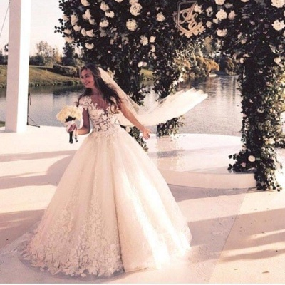 Gorgeous Short Sleeve Tulle Bridal Gowns New Lace Applique Long Princess Dresses_5