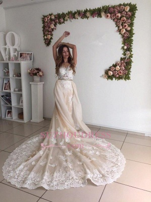 Gorgeous Lace Detachable Bride Dress  Cathedral Train Mermaid Tulle Champagne Wedding Dresses_3