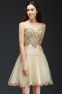Appliques Lace-Up Short Sweetheart Lovely Homecoming Dress_6