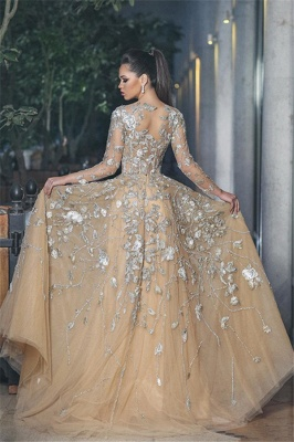 Gorgrous Sheer Long Sleeves Evening Dresses  | A-line Appliques Tulle Prom Dresses_3
