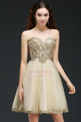 Appliques Lace-Up Short Sweetheart Lovely Homecoming Dress_7