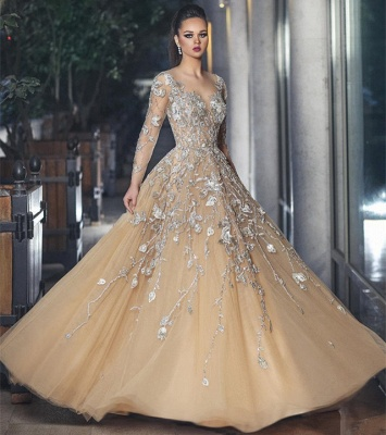 Gorgrous Sheer Long Sleeves Evening Dresses  | A-line Appliques Tulle Prom Dresses_4