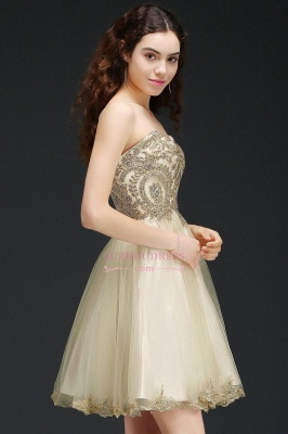 Appliques Lace-Up Short Sweetheart Lovely Homecoming Dress_5