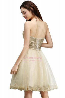 Appliques Lace-Up Short Sweetheart Lovely Homecoming Dress_4