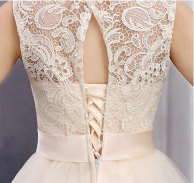 Cute Lace Tulle Bridesmaid Dresses With Bowknot Sash  Homecoming Dresses_2