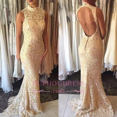 Open Back Lace High Neck Formal Evening Dress  Sleeveless Elegant Mermaid  Prom Dress_1