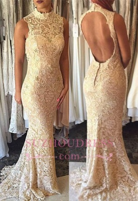 Open Back Lace High Neck Formal Evening Dress  Sleeveless Elegant Mermaid  Prom Dress_2