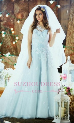 Applique Ice Blue Long Bridal Dresses  Tulle Delicate Sleeveless Wedding Dresses_1