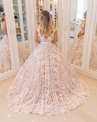 White Lace Champagne Wedding Dresses Cheap  | Sexy V-neck Open Back Puffy Bridal Gowns_5