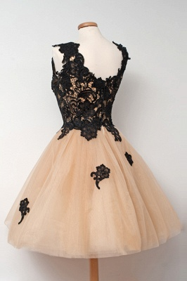 Elegant A-Line Tulle Short Homecoming Dress Sleeveless Lace Applique Mini Dresses_3