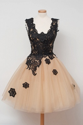Elegant A-Line Tulle Short Homecoming Dress Sleeveless Lace Applique Mini Dresses_2