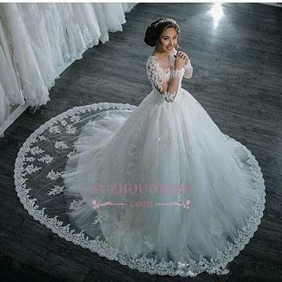 Long Sleeves Beaded Sheer Ball Gown Wedding Dress  Lace Bridal Dresses LY104_1