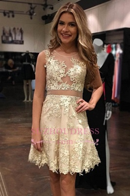 Appliques Tulle Scoop A-Line Glamorous Sleeveless   Homecoming Dress_1