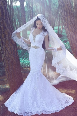 Sexy Mermaid Long Sleeve Wedding Dress Crystal Lace Custom Made Bridal Gowns_1